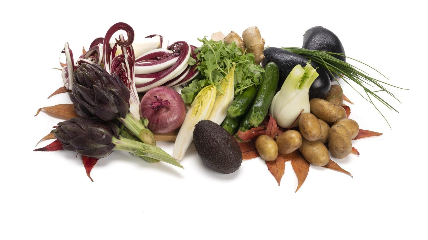 kit 2 verdura-1